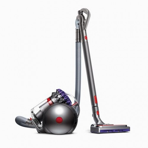 Dyson Big Ball Animal 2 Canister Vacuum
